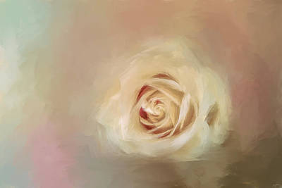 Photograph - A Rose For Grandma by Jai Johnson