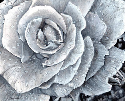 Painting - A Rose For My Love Black And White by Shana Rowe Jackson