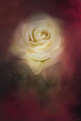 Photograph - A Rose For My Valentine by Jai Johnson
