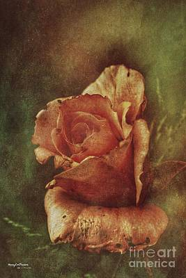 Mixed Media - A Rose From Long Ago by MaryLee Parker