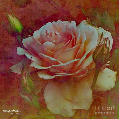 Mixed Media - A Rose  by MaryLee Parker