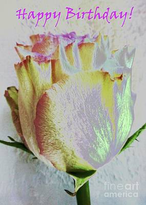 Photograph - A Rosy Birthday Wish by Barbie Corbett-Newmin
