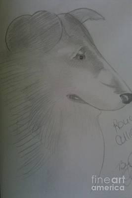 A Rough Collie Dog Art Print