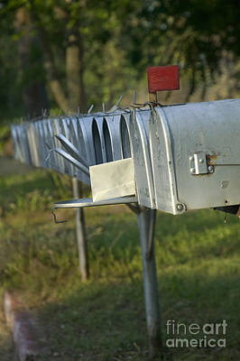 Amador Photograph - A Row Of Rural Mailboxes by Inga Spence