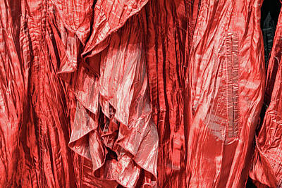 Photograph - A Ruffled Blouse by Cora Wandel