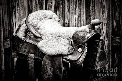 Photograph - A Saddle In Winter by Olivier Le Queinec