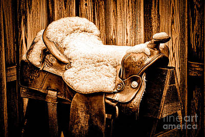 Photograph - A Saddle In Winter - Sepia by Olivier Le Queinec