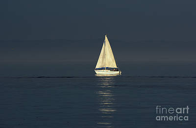 Art Print featuring the photograph A Sailboat Capturing Light by Susan Wiedmann