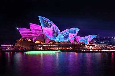 Photograph - A Sea Creature Finds Home On The Opera Houses Shell Roofs by Daniela Constantinescu