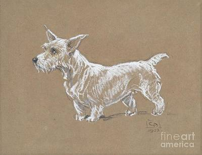 A Sealyham Terrier Print by MotionAge Designs