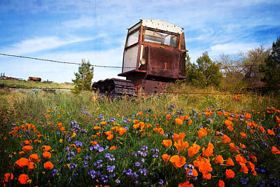 Wildflowers Photograph - A Season For Everything by Lynn Bauer