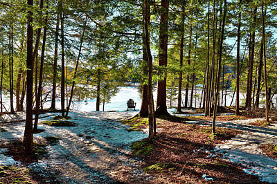 Photograph - A Secluded Spot by David Patterson