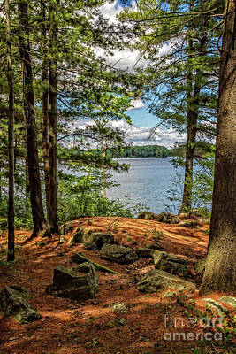 Photograph - A Secluded Spot by Gene Healy