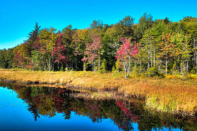 Photograph - A September Day At Cary Lake by David Patterson