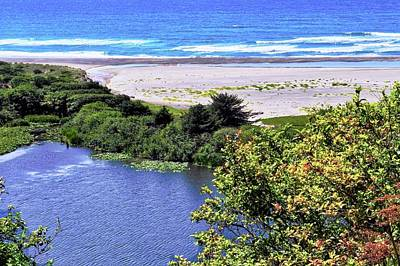 Photograph - A Serene Beach On The Pacific by Kirsten Giving