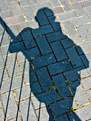 Photograph - A Shadow Of His Former Self by Brian Roscorla