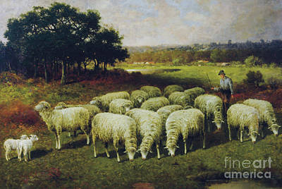 Lambing Painting - A Shepherd With His Sheep Out In The Field, 1898 by Charles T Phelan