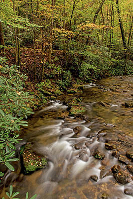 Photograph - A Shimnmering Jones Gap Creek by Willie Harper