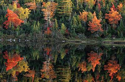 Photograph - A Shore Lined With Trees In Autumn Hues by Raymond Gehman