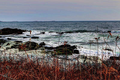 Photograph - A Shoreline In New England by Tom Prendergast