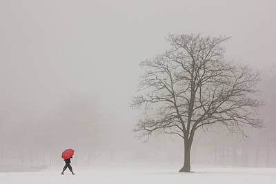 With Red Photograph - A Shortcut Through The Snow by Tom York Images