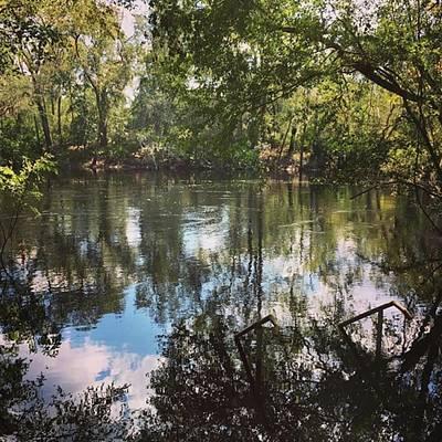River Photograph - A Shot I Took Of The Suwannee River by Daniel Eskridge