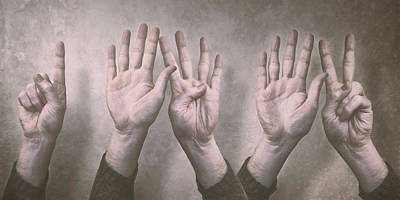Textured Background Photograph - A Show Of Hands Day 197 by Scott Norris