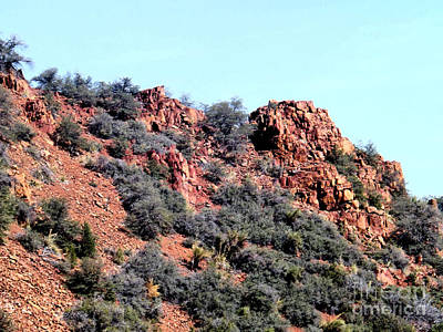 Photograph - A Side Of A Mountain With Bushes by Jym Wells