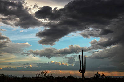 Photograph - A Silhouette Sunset In The Sonoran  by Saija Lehtonen