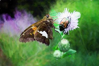 Digital Art - A Silver Spotted Skipper Moth And A Beetle. by Rusty R Smith
