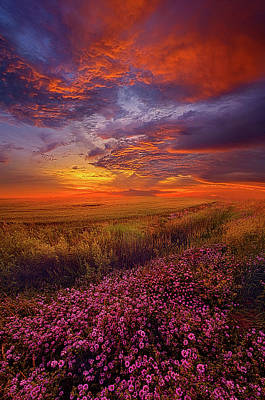 Photograph - A Simple Purpose by Phil Koch