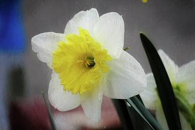 Digital Art - A Single Daffodil Blossom by Rusty R Smith