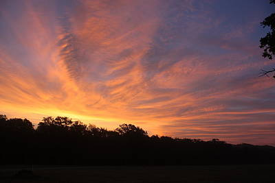 Photograph - A Sky On Fire by Sheila Brown