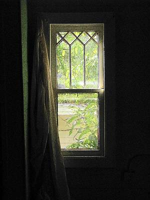 Photograph - Have You Ever Walked Through A Window by Strangefire Art Scylla Liscombe