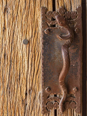 Photograph - A Snake On The Door by Jean Noren