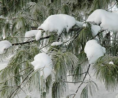 A Snowy Day Art Print
