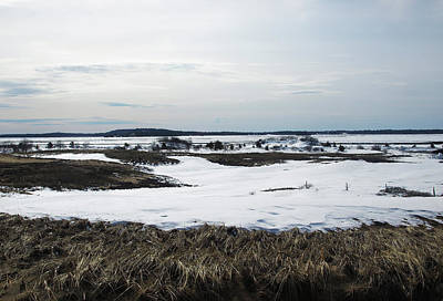 Photograph - A Snowy Marsh by Mary Capriole