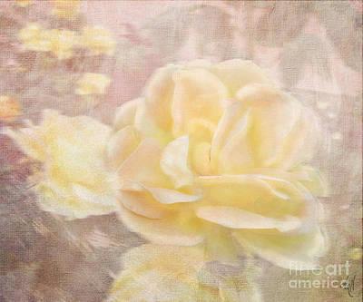 A Softer Rose Art Print by Victoria Harrington