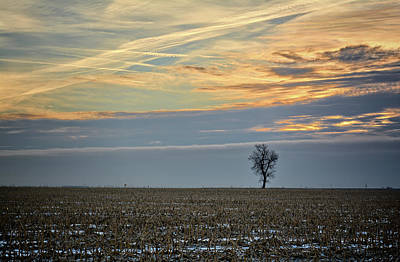 Photograph - A Solitary Morning by Bonfire Photography