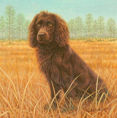Boykin Spaniel Painting - A Southern L.b.d. by Rachelle Siegrist