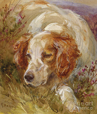 Paws Painting - A Spaniel by James Hardy Junior