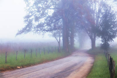 Photograph - A Sparks Lane Morning by Lana Trussell