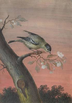 Spring Painting - A Sparrow On A Spring Branch by MotionAge Designs