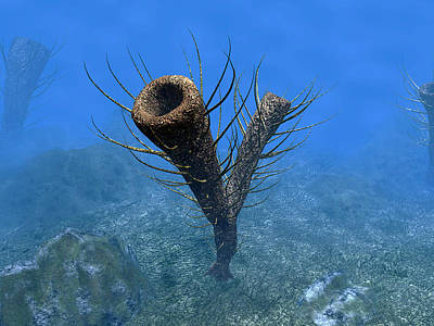 Aquatic Digital Art - A Species Of Pirania, A Primitive by Walter Myers