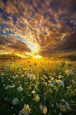 Photograph - A Spiritual Calling by Phil Koch