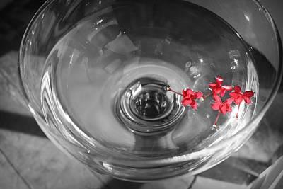 Photograph - A Splash Of Color by Mandy Shupp