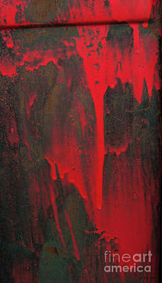Photograph - A Splash Of Red-signed-#8915 by J L Woody Wooden