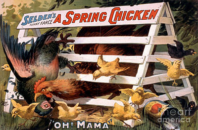 Painting - A Spring Chicken Farm Decor by Edward Fielding