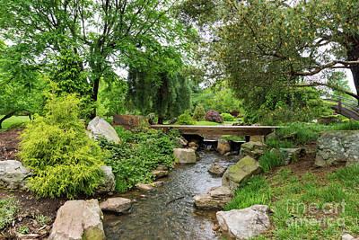 Photograph - A Spring Garden by Jennifer White