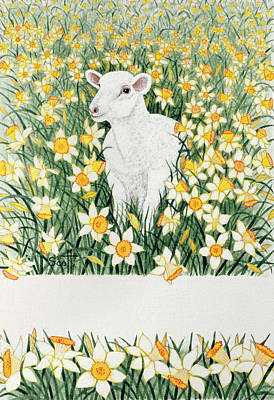 Sheep Drawing - A Spring In The Step by Pat Scott